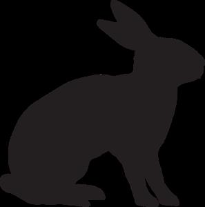 Kaninchen fangen